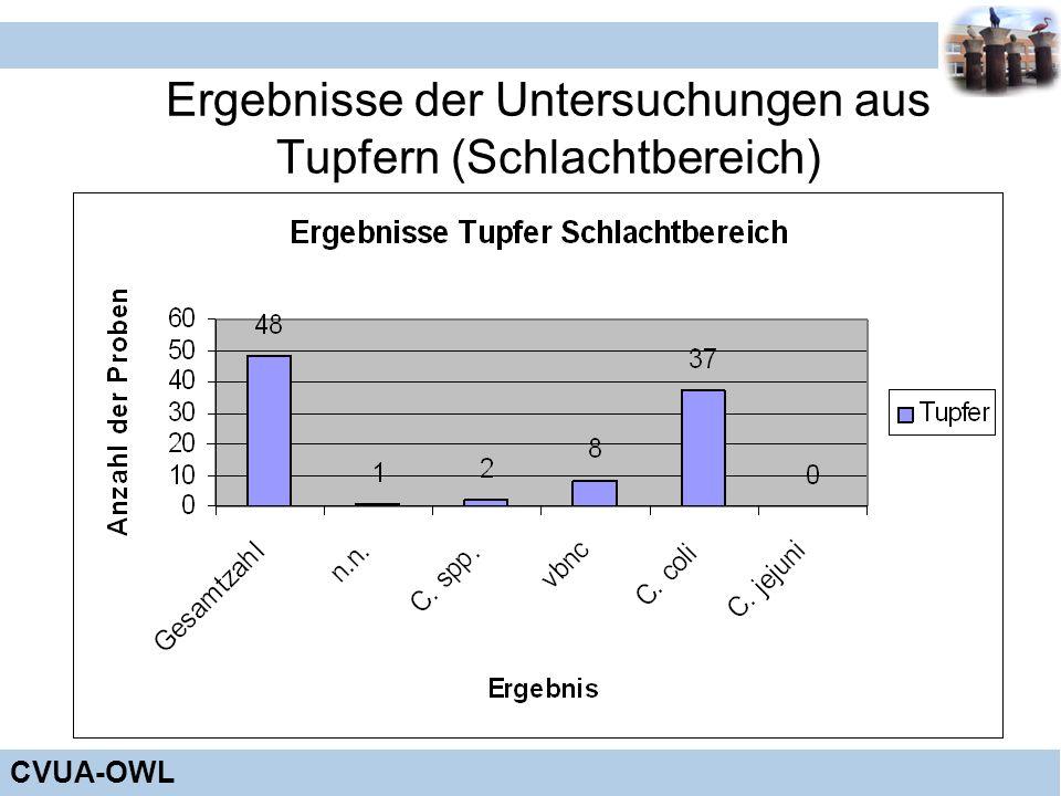 Ergebnisse der Untersuchungen aus Tupfern (Schlachtbereich)