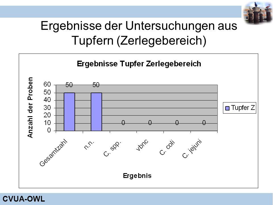 Ergebnisse der Untersuchungen aus Tupfern (Zerlegebereich)