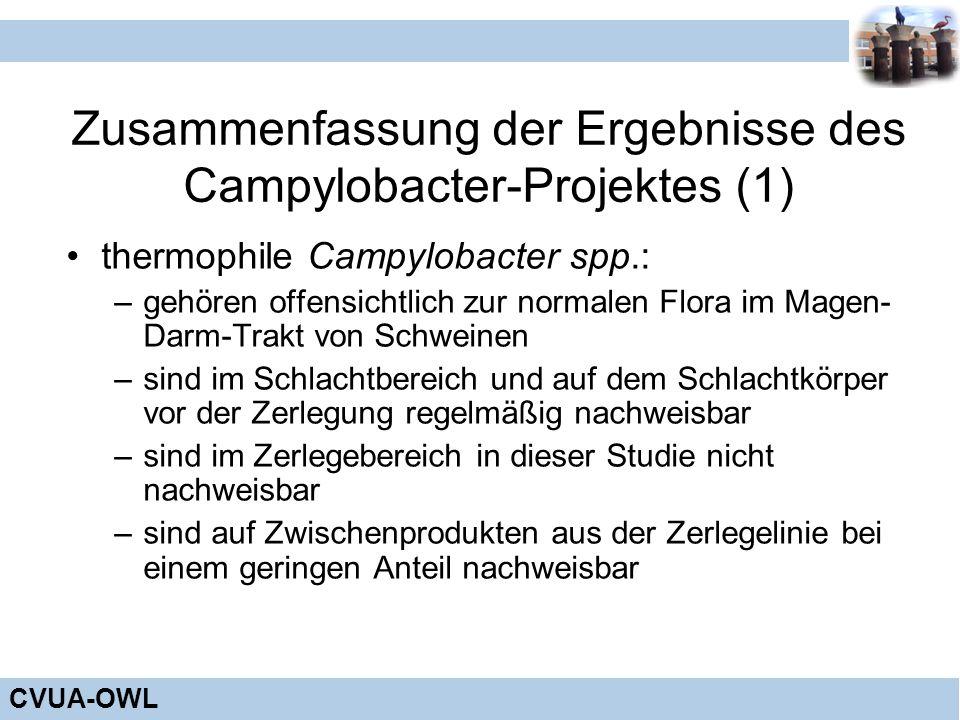 Zusammenfassung der Ergebnisse des Campylobacter-Projektes (1)