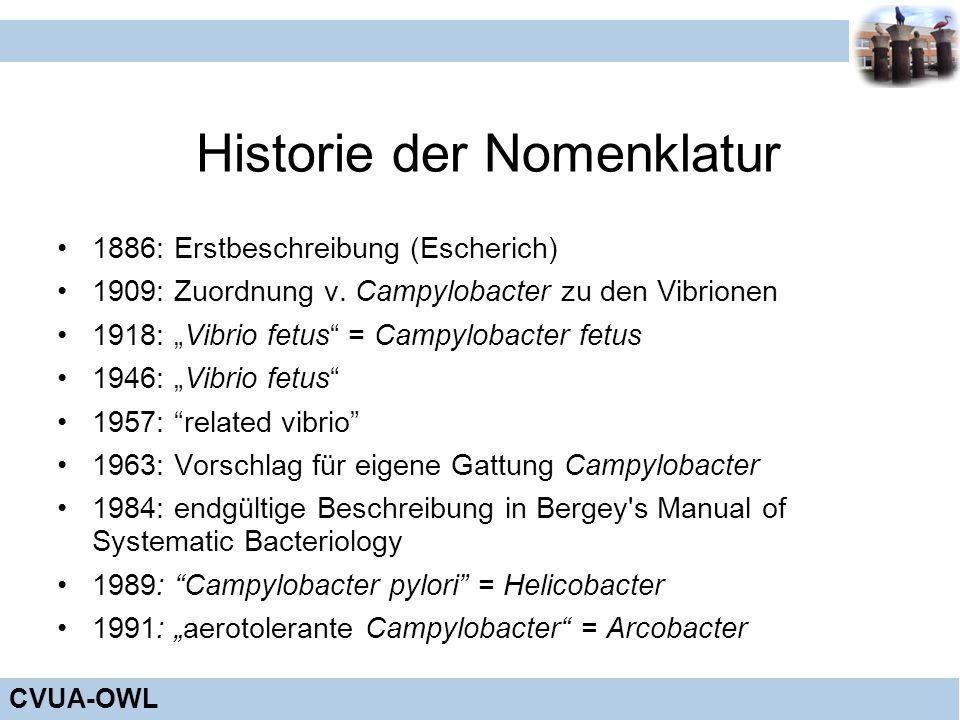 Historie der Nomenklatur
