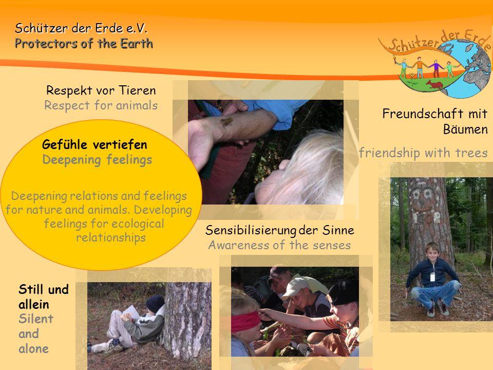 Freundschaft mit Bäumen friendship with trees
