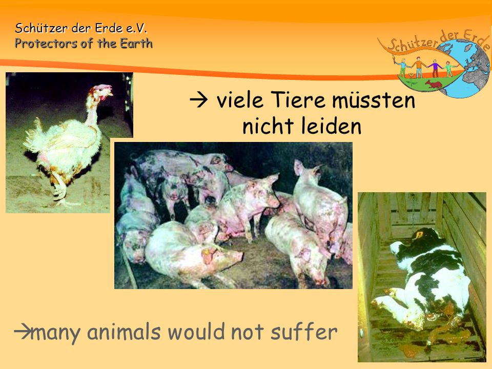 many animals would not suffer