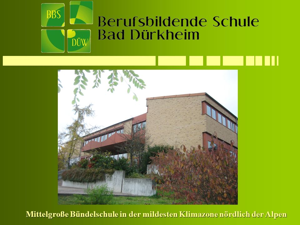 Mittelgroße Bündelschule in der mildesten Klimazone nördlich der Alpen
