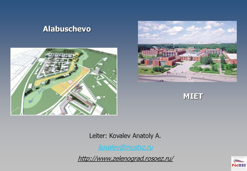 Leiter: Kovalev Anatoly A.