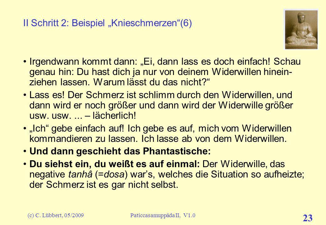 """II Schritt 2: Beispiel """"Knieschmerzen (6)"""