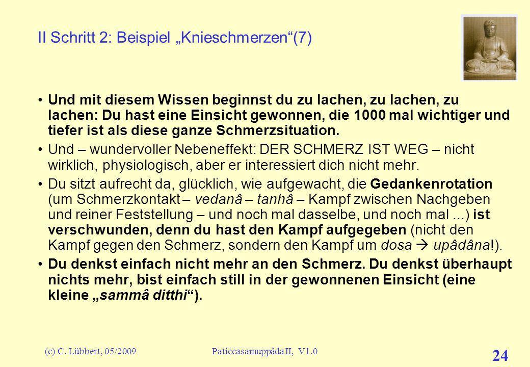 """II Schritt 2: Beispiel """"Knieschmerzen (7)"""