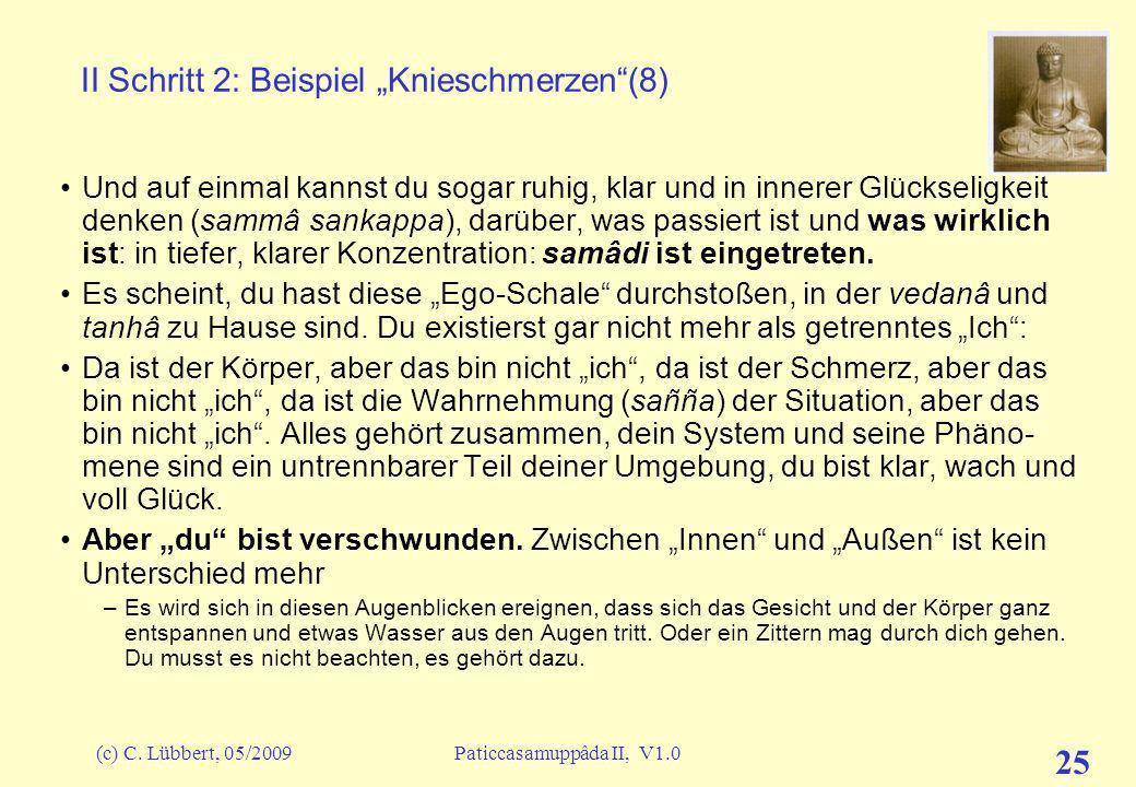 """II Schritt 2: Beispiel """"Knieschmerzen (8)"""