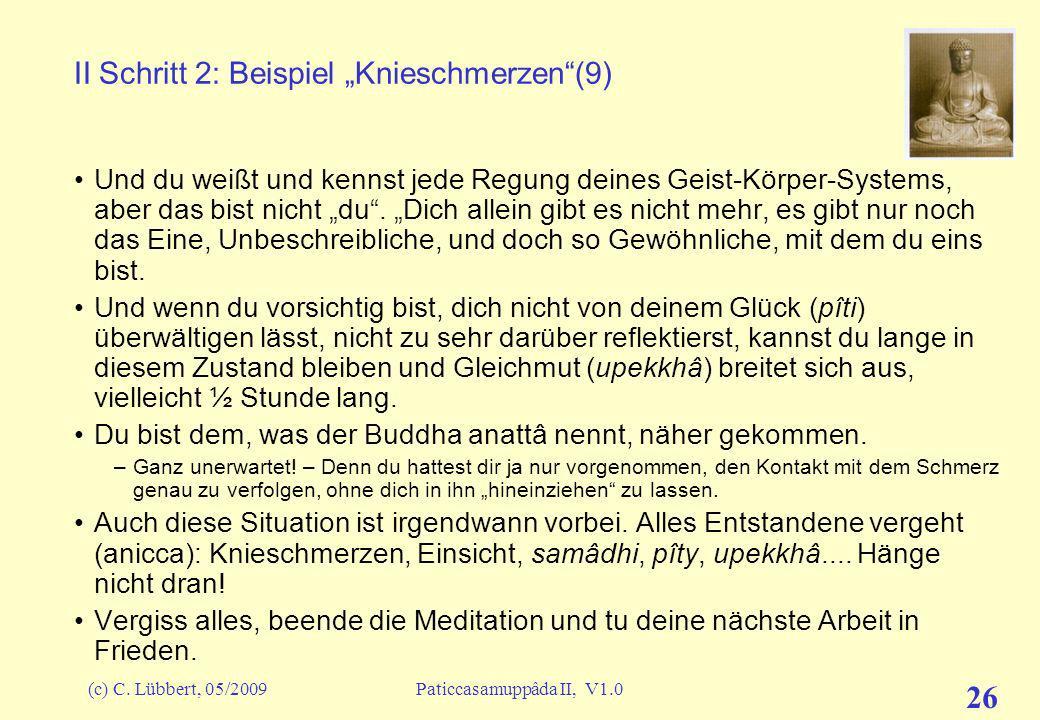 """II Schritt 2: Beispiel """"Knieschmerzen (9)"""