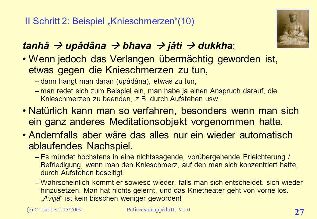 """II Schritt 2: Beispiel """"Knieschmerzen (10)"""