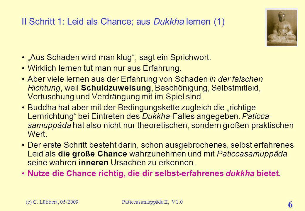 II Schritt 1: Leid als Chance; aus Dukkha lernen (1)