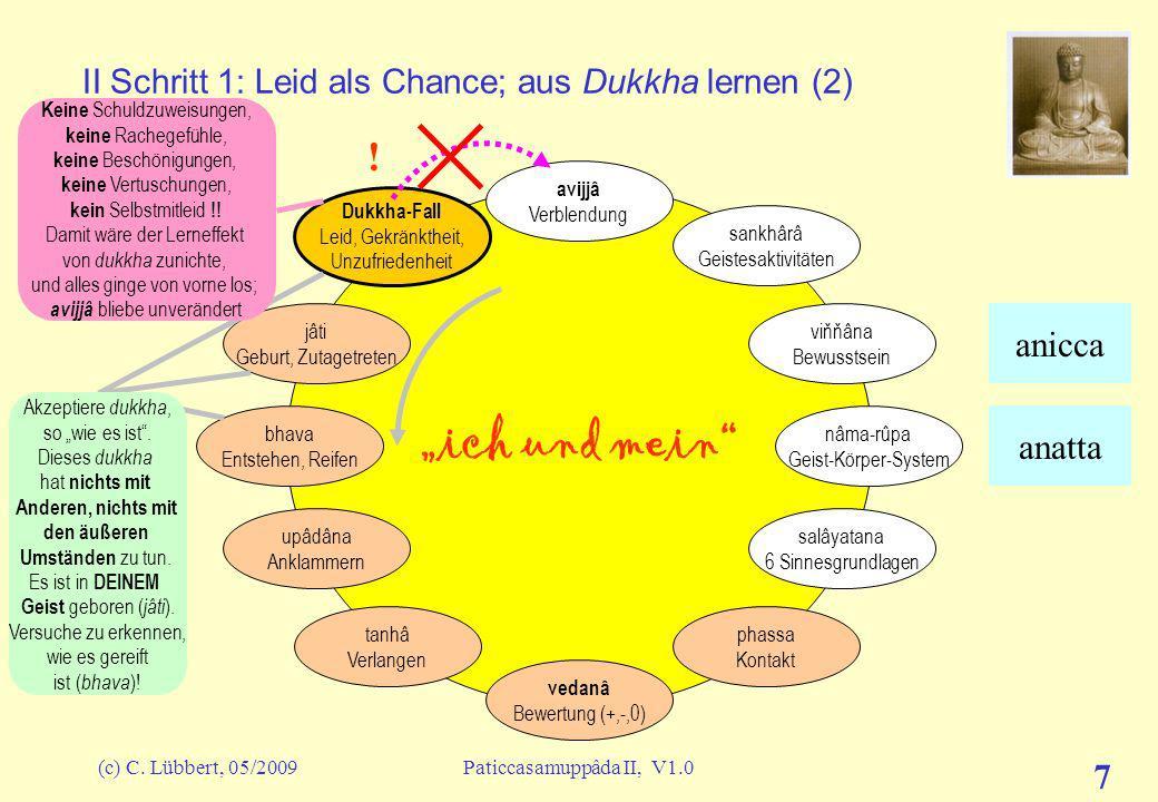 II Schritt 1: Leid als Chance; aus Dukkha lernen (2)