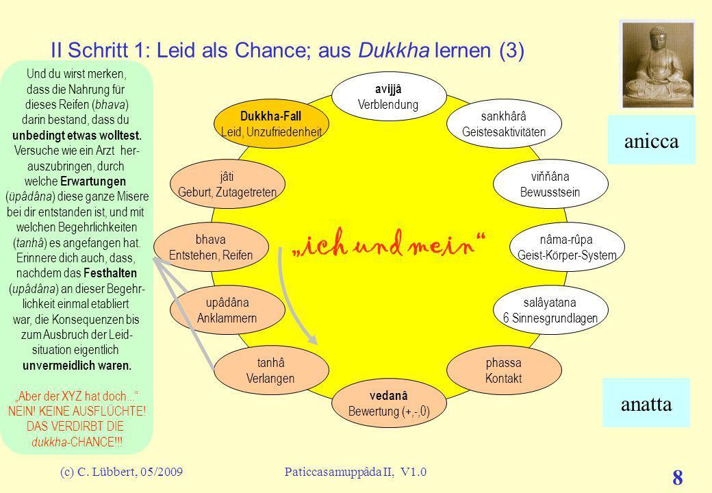 II Schritt 1: Leid als Chance; aus Dukkha lernen (3)