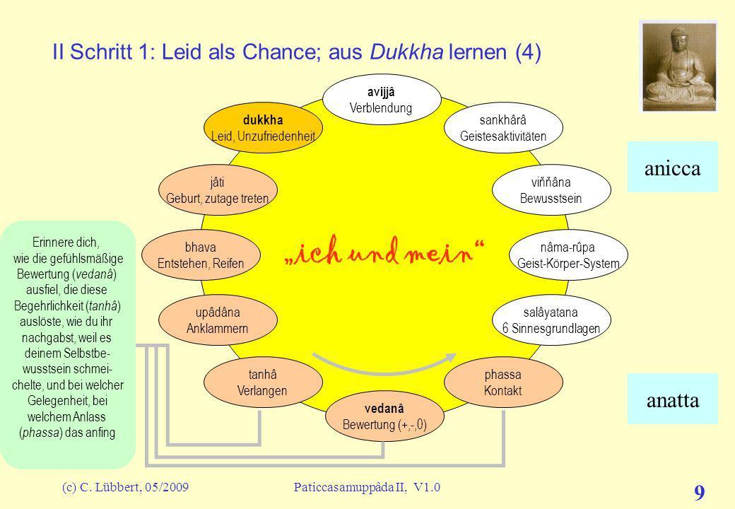 II Schritt 1: Leid als Chance; aus Dukkha lernen (4)