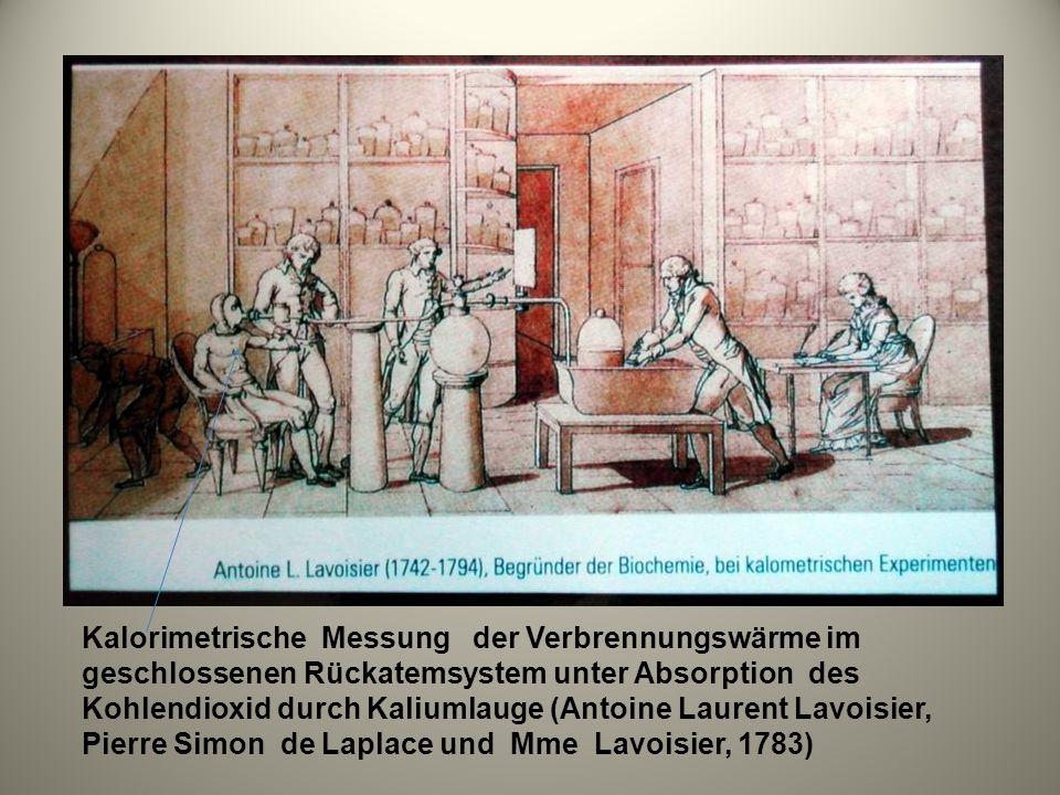 Kalorimetrische Messung der Verbrennungswärme im geschlossenen Rückatemsystem unter Absorption des Kohlendioxid durch Kaliumlauge (Antoine Laurent Lavoisier, Pierre Simon de Laplace und Mme Lavoisier, 1783)
