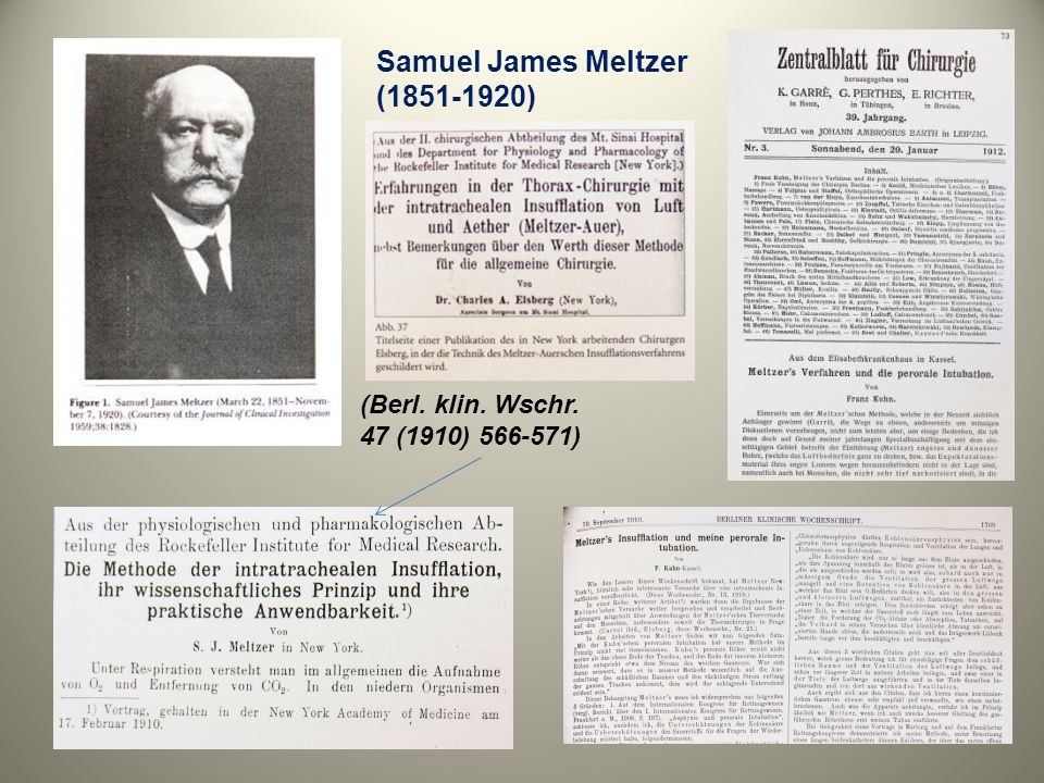 Samuel James Meltzer ( )