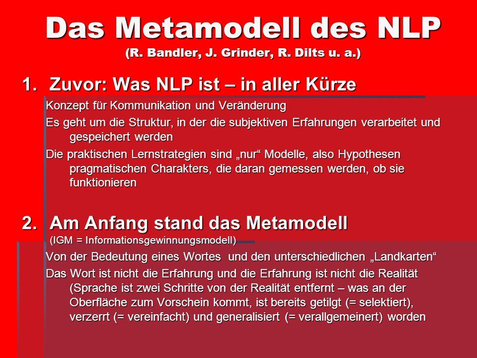 Das Metamodell des NLP (R. Bandler, J. Grinder, R. Dilts u. a.)