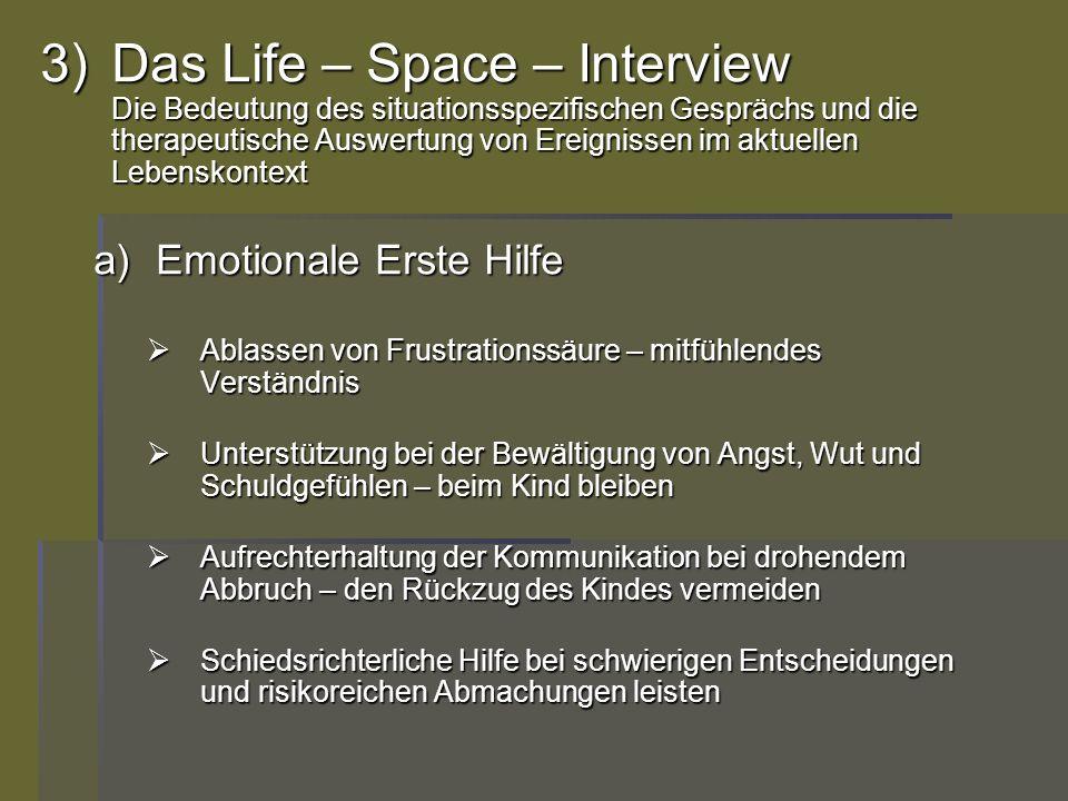 Das Life – Space – Interview Die Bedeutung des situationsspezifischen Gesprächs und die therapeutische Auswertung von Ereignissen im aktuellen Lebenskontext