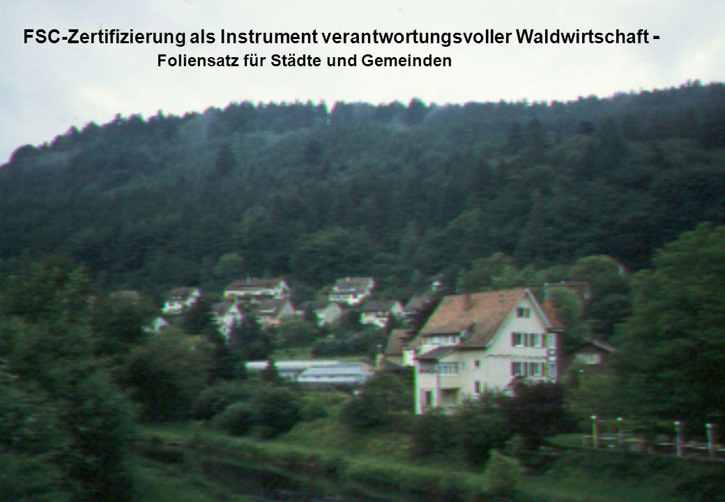 FSC-Zertifizierung als Instrument verantwortungsvoller Waldwirtschaft -