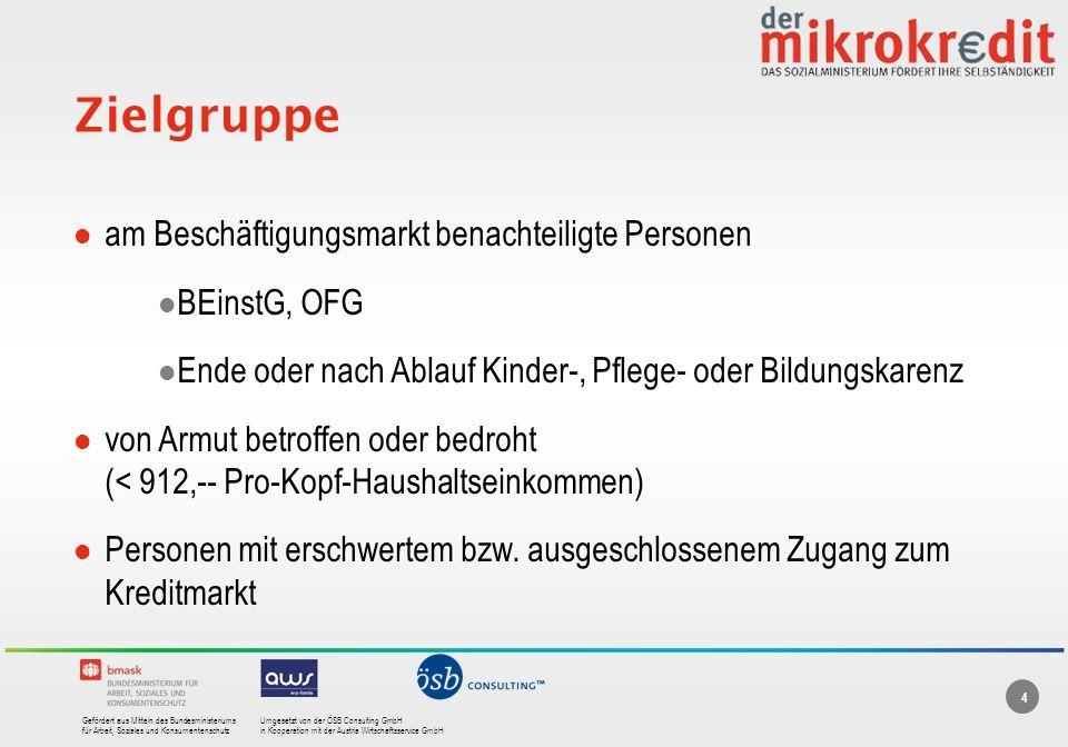 Zielgruppe am Beschäftigungsmarkt benachteiligte Personen BEinstG, OFG