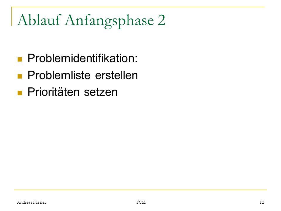 Ablauf Anfangsphase 2 Problemidentifikation: Problemliste erstellen
