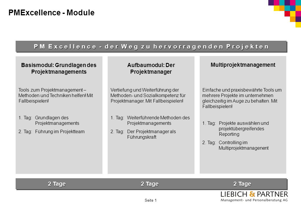 PMExcellence - Module P M E x c e l l e n c e - d e r W e g z u h e r v o r r a g e n d e n P r o j e k t e n.