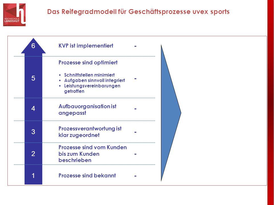 Das Reifegradmodell für Geschäftsprozesse uvex sports