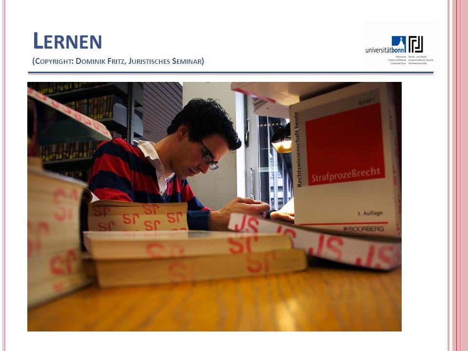 Lernen (Copyright: Dominik Fritz, Juristisches Seminar)