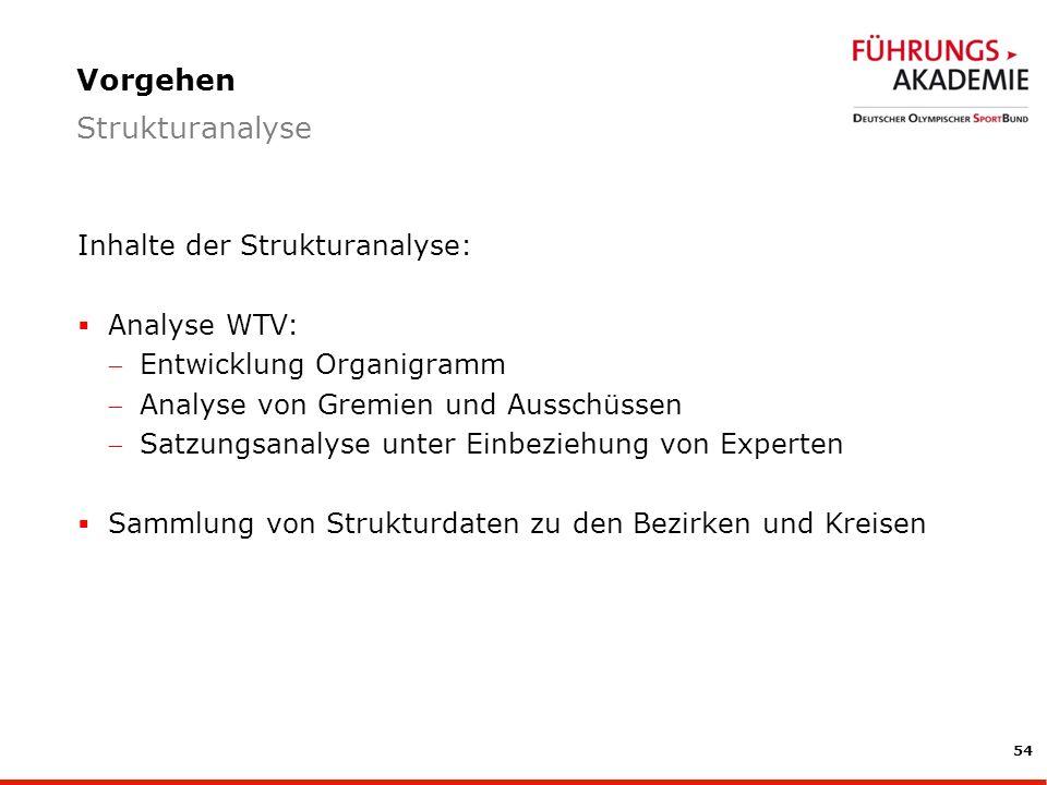 Vorgehen Strukturanalyse Inhalte der Strukturanalyse: Analyse WTV: