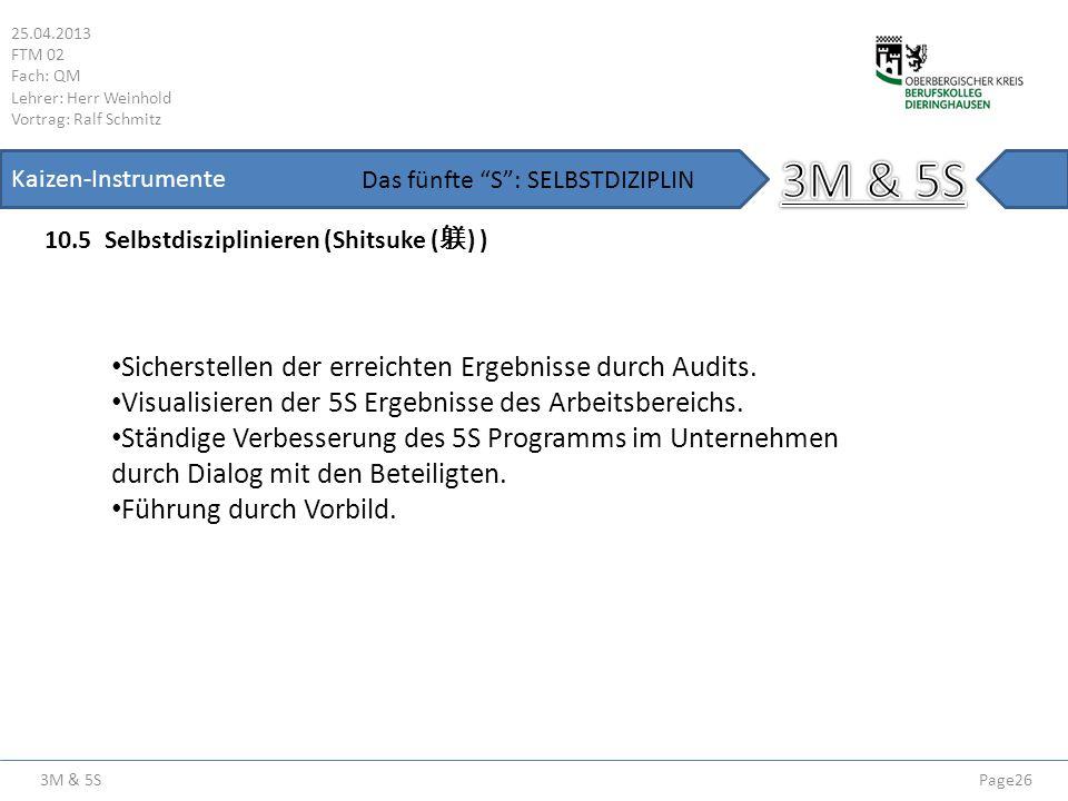 3M & 5S Sicherstellen der erreichten Ergebnisse durch Audits.