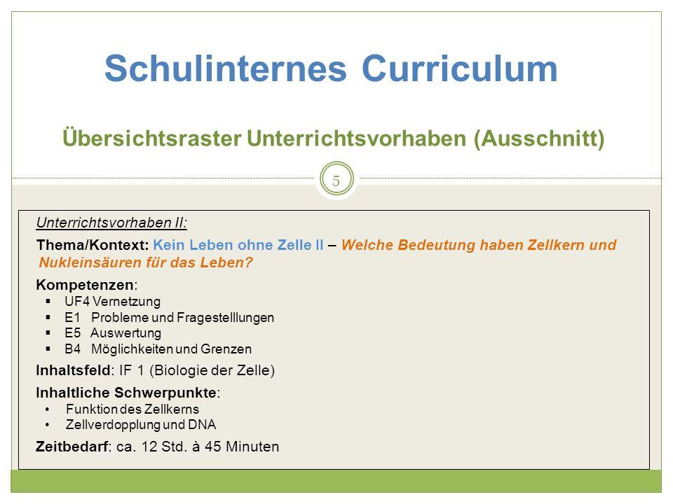 Schulinternes Curriculum