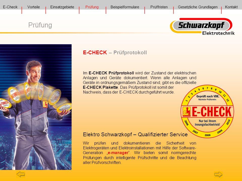 Prüfung E-CHECK – Prüfprotokoll
