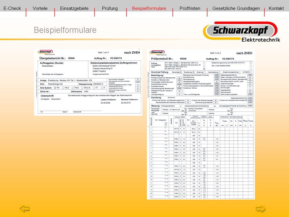 Beispielformulare E-Check Vorteile Einsatzgebiete Prüfung