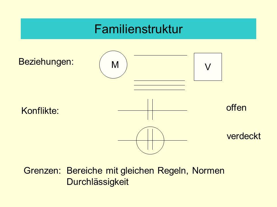 Familienstruktur Beziehungen: V M offen Konflikte: verdeckt