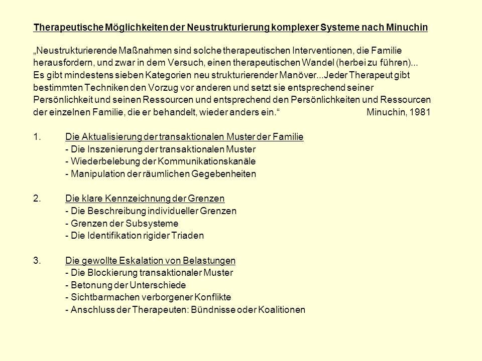 Therapeutische Möglichkeiten der Neustrukturierung komplexer Systeme nach Minuchin
