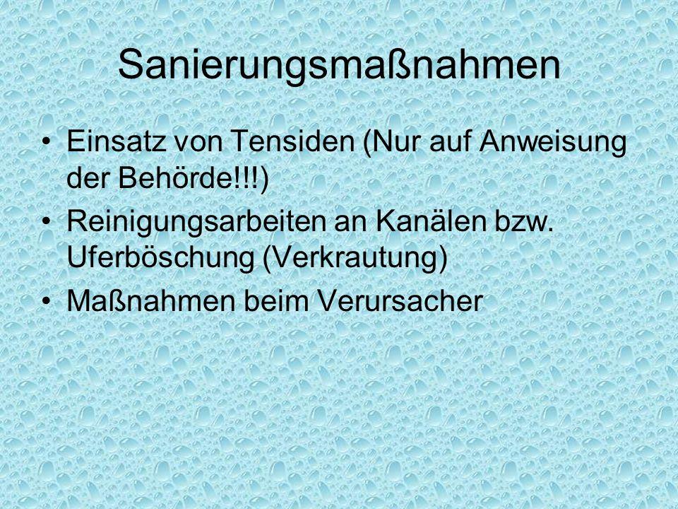 Sanierungsmaßnahmen Einsatz von Tensiden (Nur auf Anweisung der Behörde!!!) Reinigungsarbeiten an Kanälen bzw. Uferböschung (Verkrautung)