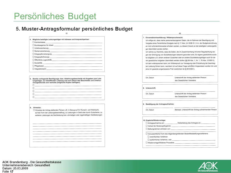 Persönliches Budget 5. Muster-Antragsformular persönliches Budget
