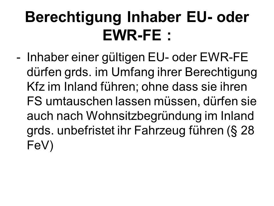 Berechtigung Inhaber EU- oder EWR-FE :