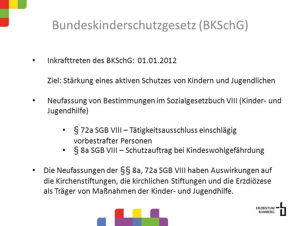 Bundeskinderschutzgesetz (BKSchG)
