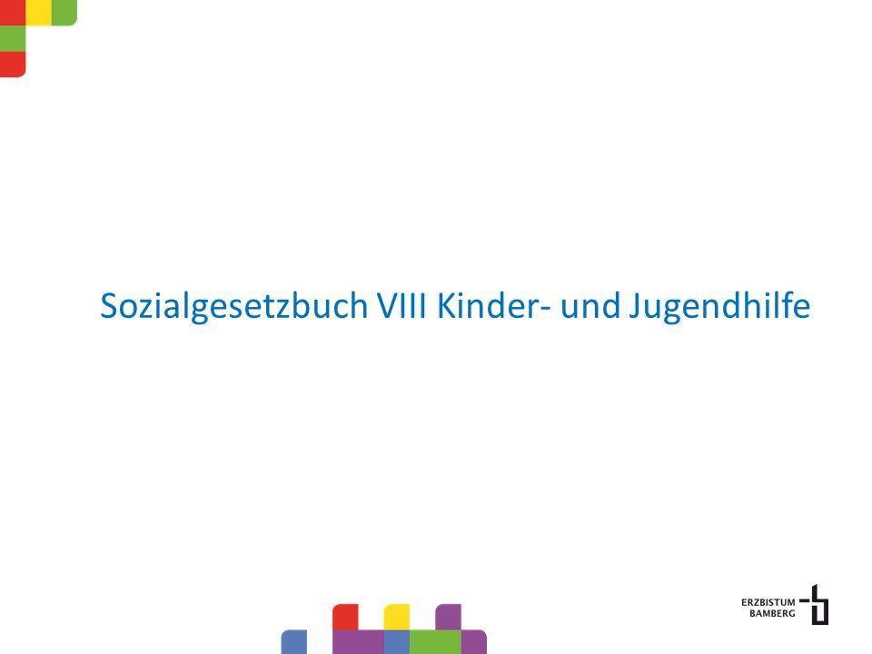 Sozialgesetzbuch VIII Kinder- und Jugendhilfe