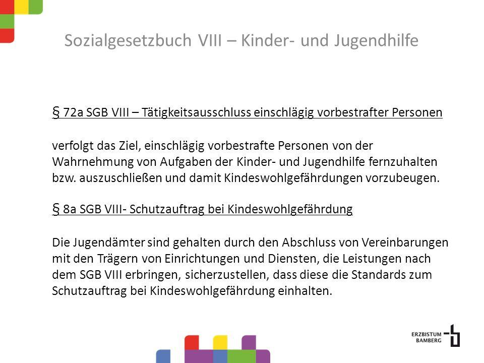 Sozialgesetzbuch VIII – Kinder- und Jugendhilfe