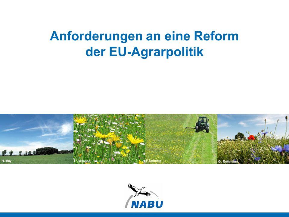 Anforderungen an eine Reform der EU-Agrarpolitik