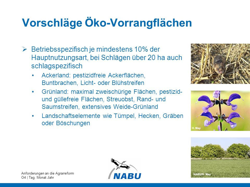 Vorschläge Öko-Vorrangflächen