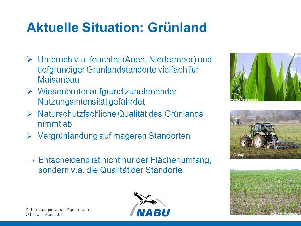 Aktuelle Situation: Grünland