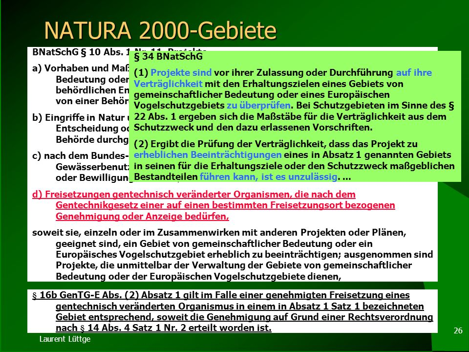 NATURA 2000-Gebiete BNatSchG § 10 Abs. 1 Nr. 11. Projekte