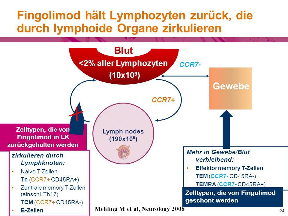 Fingolimod hält Lymphozyten zurück, die durch lymphoide Organe zirkulieren