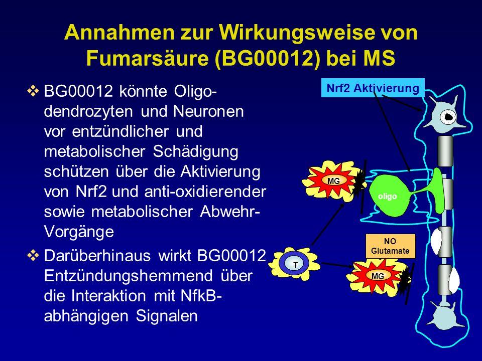 Annahmen zur Wirkungsweise von Fumarsäure (BG00012) bei MS