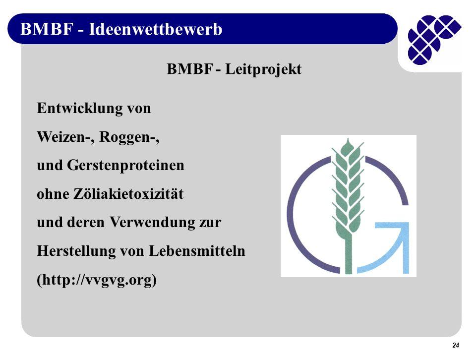 BMBF - Ideenwettbewerb