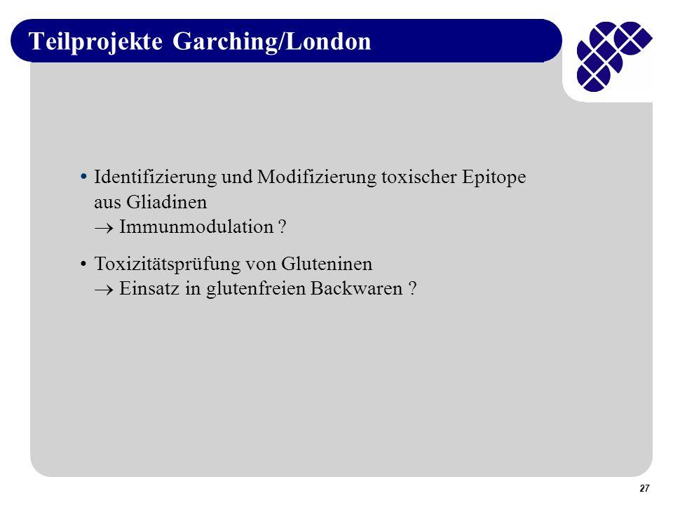 Teilprojekte Garching/London