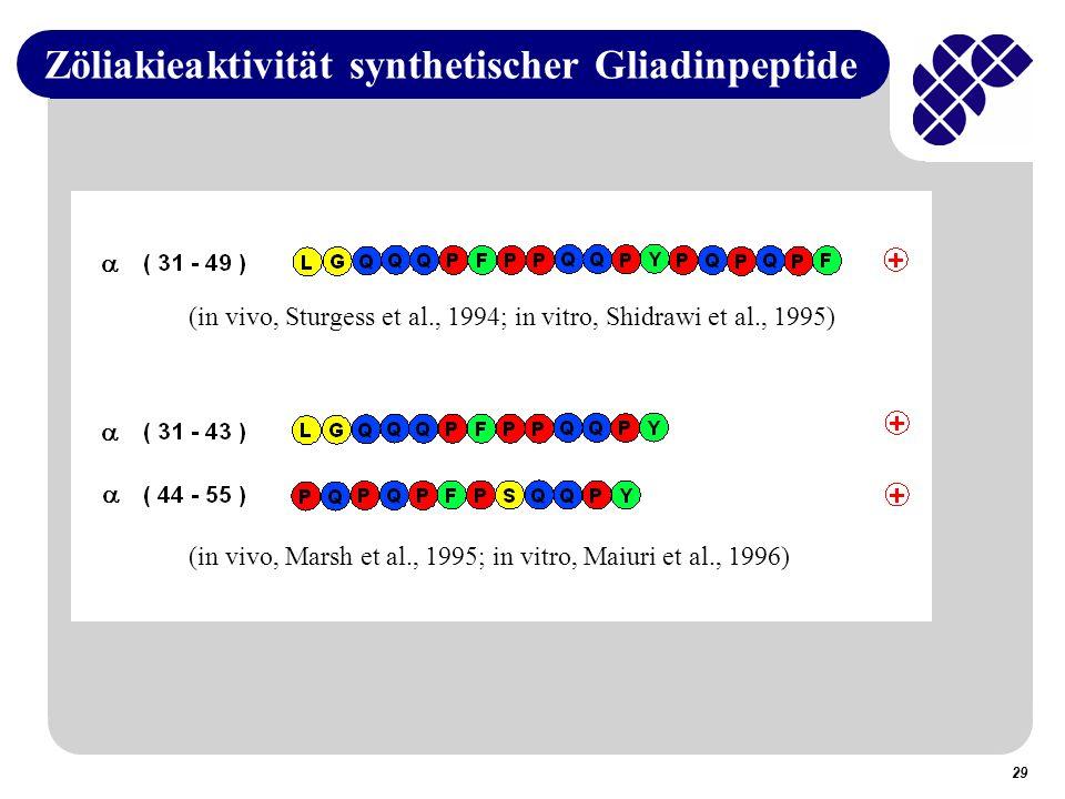 Zöliakieaktivität synthetischer Gliadinpeptide