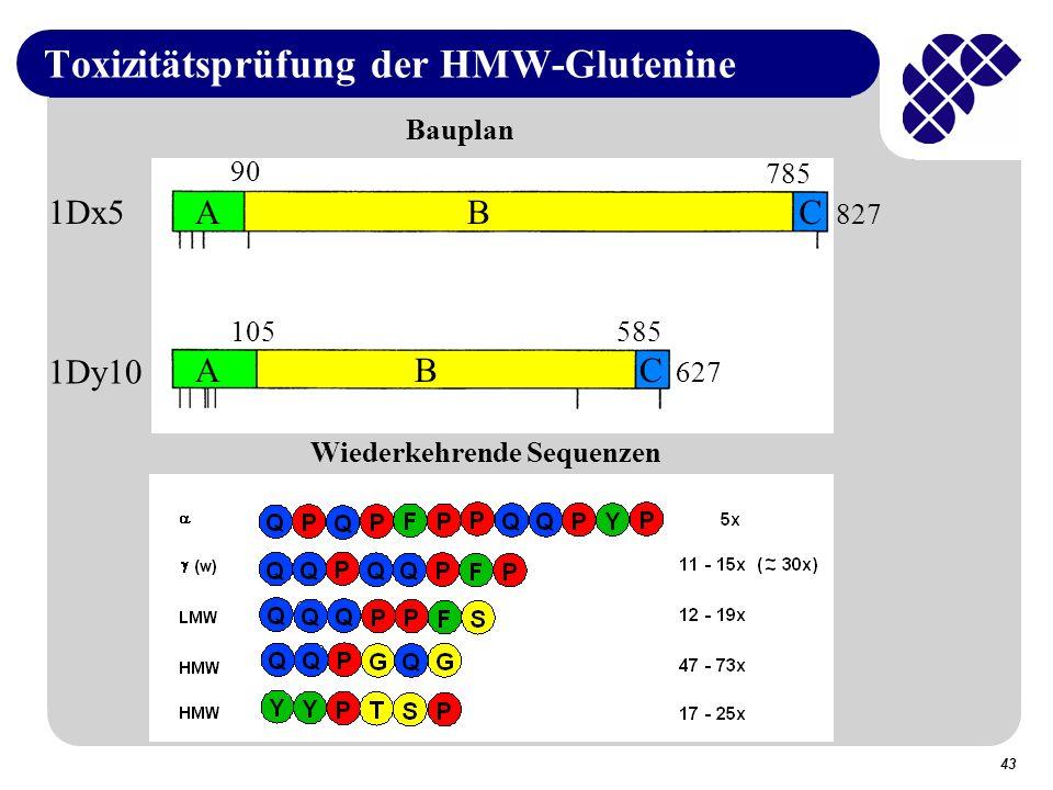 Toxizitätsprüfung der HMW-Glutenine